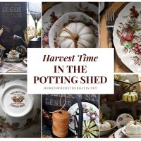 Harvest Time and Garden Table in the Potting Shed