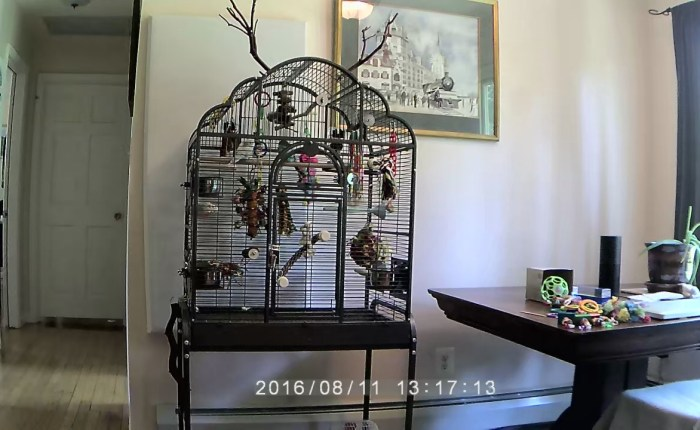 optimal cage placement