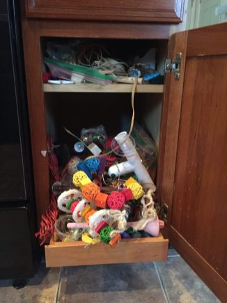 parakeet toy and perch hoard