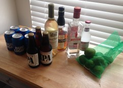 Six Cans of Beer, Three Bottles of Beer, Bottle of Wine, a Smirnoff Ice, bag of limes, and two bottles of spirits