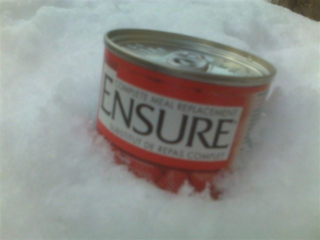 Ensure can in snow