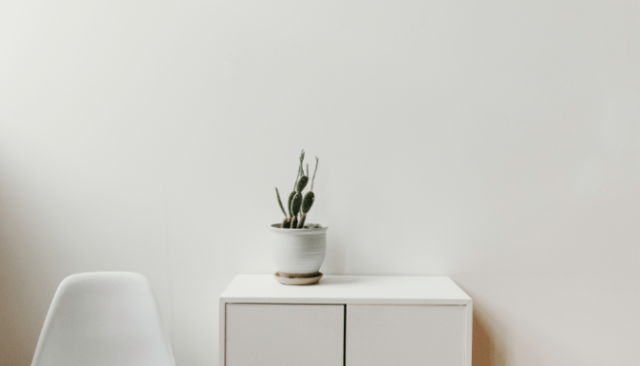 An image of a white chair and cactus to demonstrate the process of furnishing a new home.