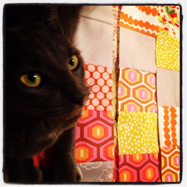unfinished quilt with cat by homemadecity.com