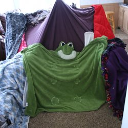 One For The Boys ~ Blanket Forts!