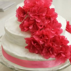 Raspberry White Chocolate Ganache Wedding Cake