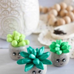 clay succulent craft