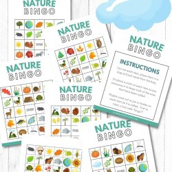 nature bingo printables