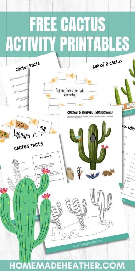Free Cactus Activity Printables