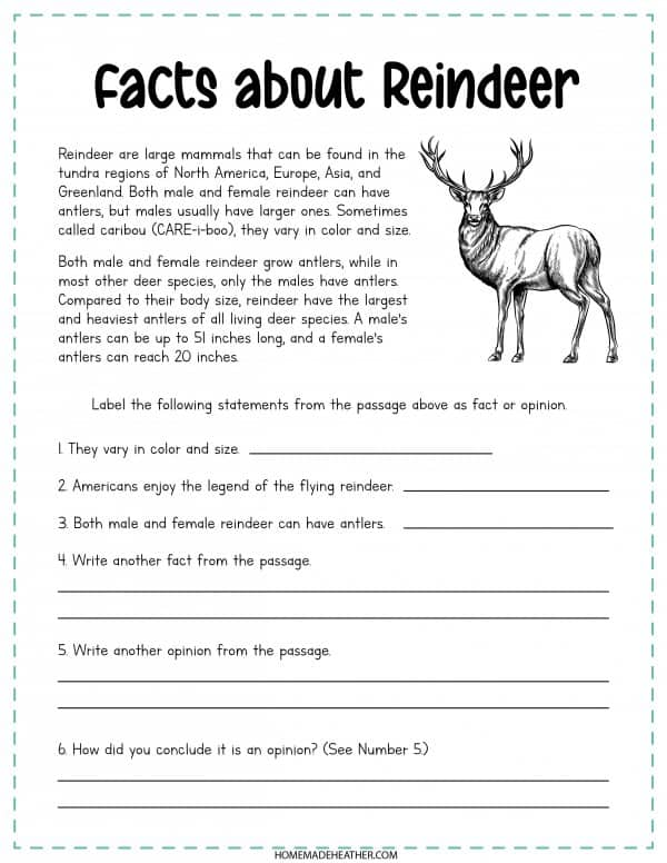 Facts About Reindeer Printable