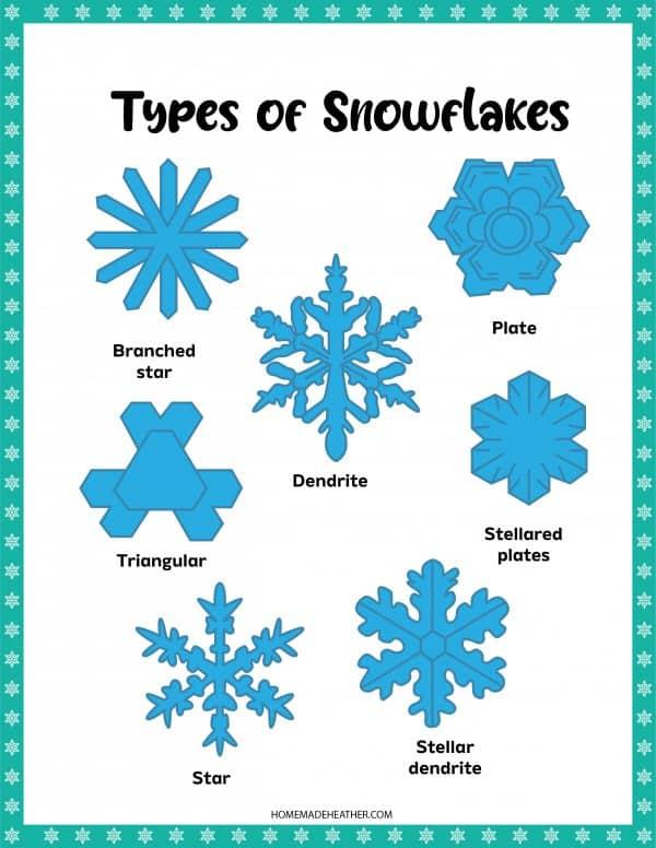 Types of Snowflakes Printable