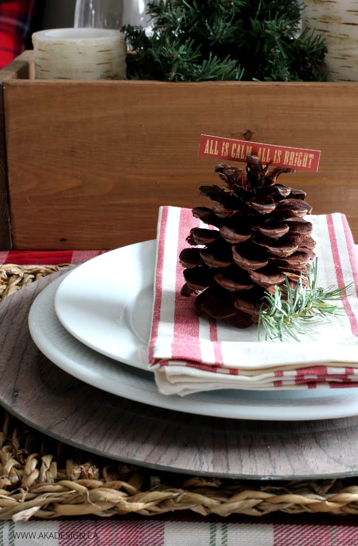 Woodland Christmas Place Setting BLOG size