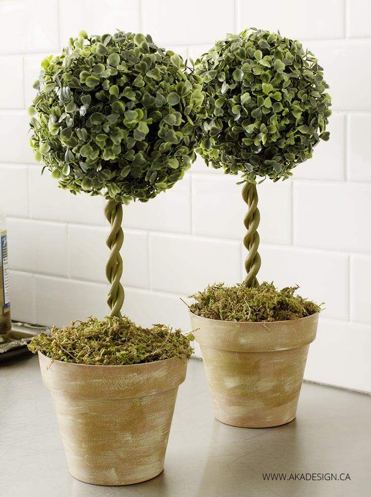 diy topiary trees