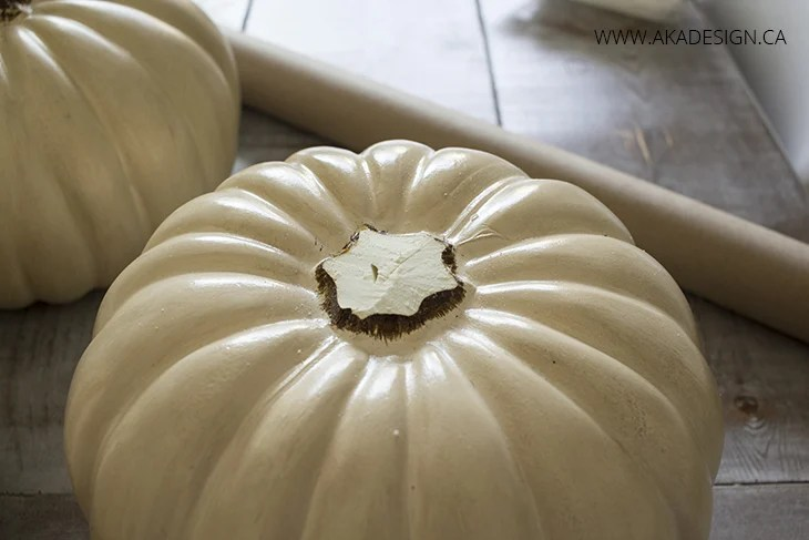 pumpkin stem cut off