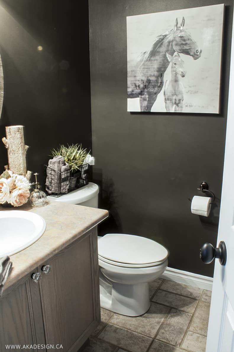 bathroom makeover2