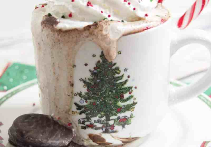 Thin Mint Hot Chocolate Recipe