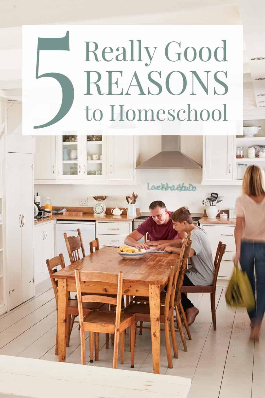 5 really good reasons to homeschool.