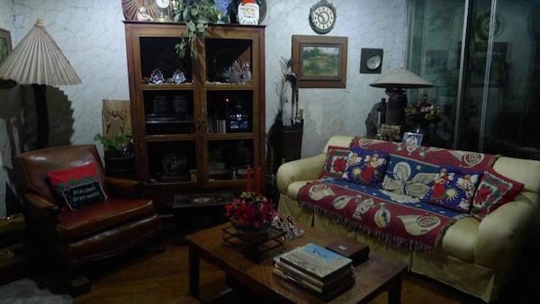 Homemade Parties Christmas House28