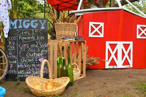 Homemade Parties_DIY Party_Barnyard_Miggy11