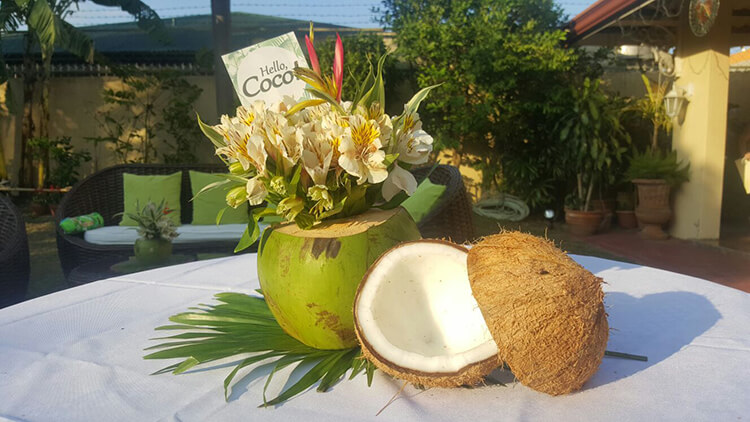 Homemade-Parties_DIY-Party_Tropical-Party_Coco14