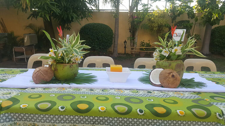 Homemade-Parties_DIY-Party_Tropical-Party_Coco15