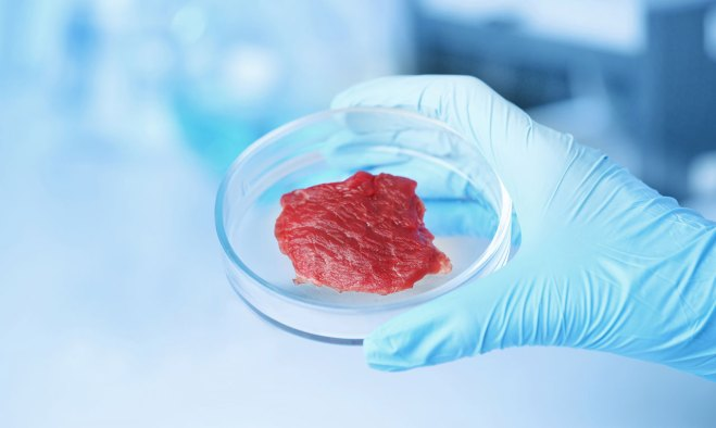 Viande laboratoire homéopathie.