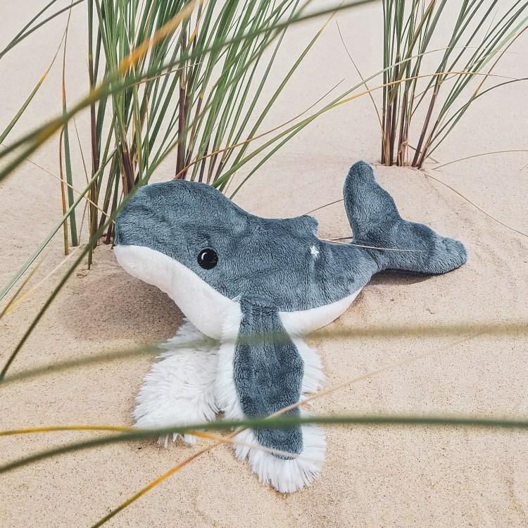 Marceau el baleineau plage
