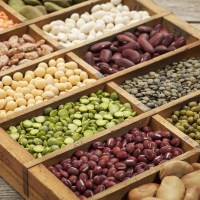 Low-FODMAP Servings for Legumes