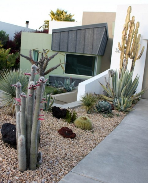 modern succulent garden ideas 36 Cactus Garden Design Ideas : Landscaping with Cactus