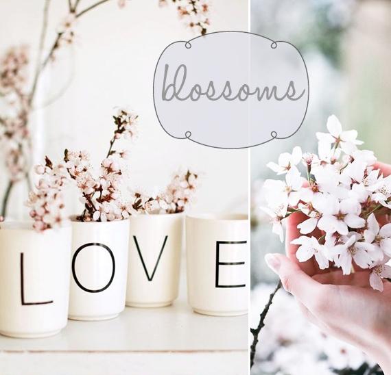 flowers_last3