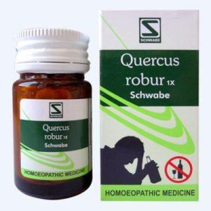 Schwabe Quercus Robur 1x Tablet for alcohol De-Addiction