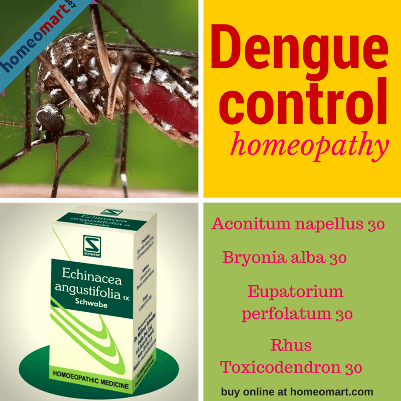 Homeopathic medicines for Dengue prevention and treatment. Eupatorium Perfoliatum