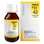 Dr.Bakshi B42 Hematinic drops for blood formation & circulation