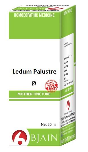 Bjain Ledum Palustre Q Homeopathic Mother Tincture