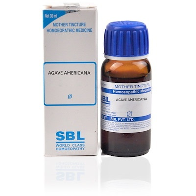 Sbl Agave Americana Mother Tincture Q