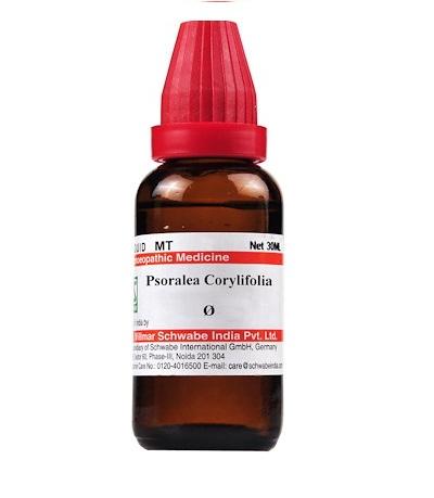Schwabe Psoralea Corylifolia Homeopathy Mother Tincture Q