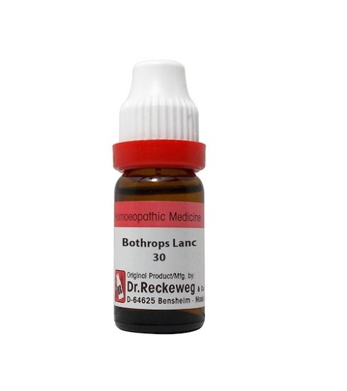 Dr Reckeweg Germany Bothrops Lanceolatus Homeopathy Dilution 6C, 30C, 200C, 1M, 10M
