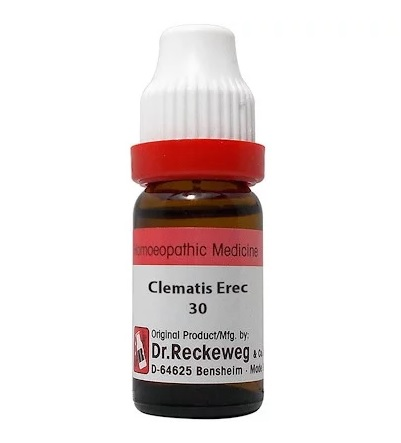 Dr Reckeweg Germany Clematis Erecta Homeopathy Dilution 6C, 30C, 200C, 1M, 10M