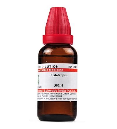 Schwabe Calotropis Gigantea Homeopathy Dilution 6C, 30C, 200C, 1M, 10M, CM