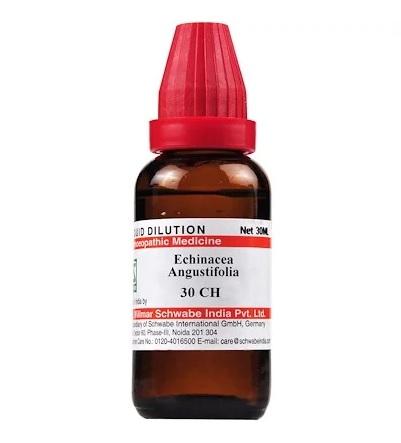 Schwabe Echinacea Angustifolia Homeopathy Dilution 6C, 30C, 200C, 1M, 10M, CM