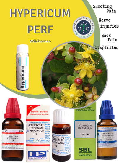 Hypericum perforatum St.John Wort for nerve injuries