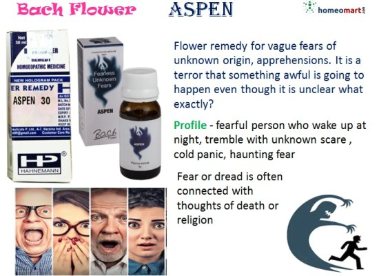 Bach flower remedy aspen indication profile