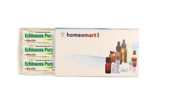 Echinacea Purpurea homeopathy pills