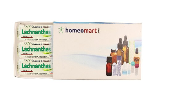 Lachnanthes homeopathy pills