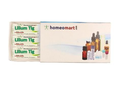 Lilium Tigrinum homeopathy pills