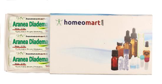 Aranea Diadema homeopathy pellets