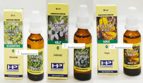 BFR Mix Scleranthus, Holly, Gorse for Commitment Phobia