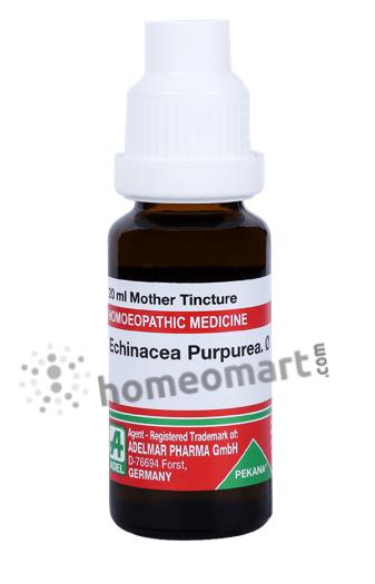 Adel Echinacea Purpurea Homeopathy Mother Tincture Q