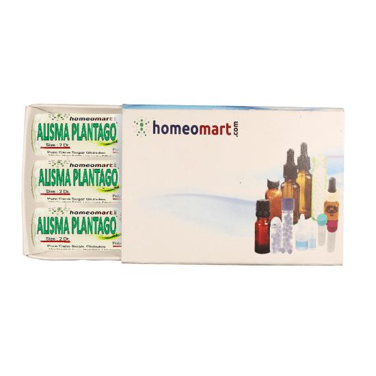 Alisma Plantago Homeopathy 2 Dram Pellets 6C, 30C, 200C, 1M, 10M