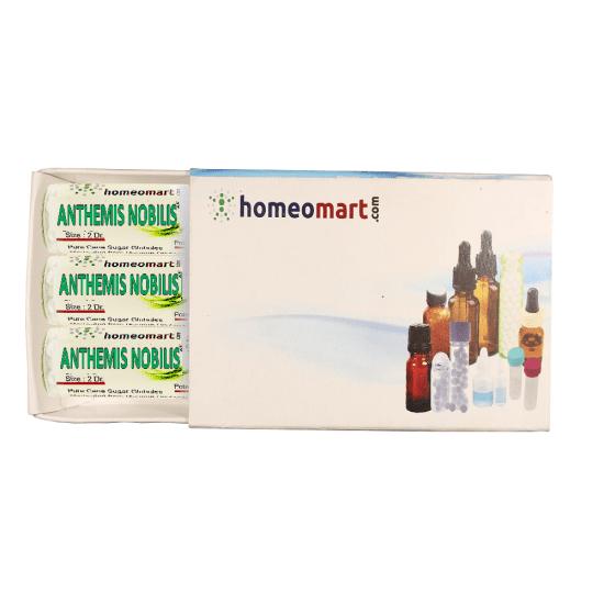 Anthemis Nobilis Homeopathy 2 Dram Pellets 6C, 30C, 200C, 1M, 10M