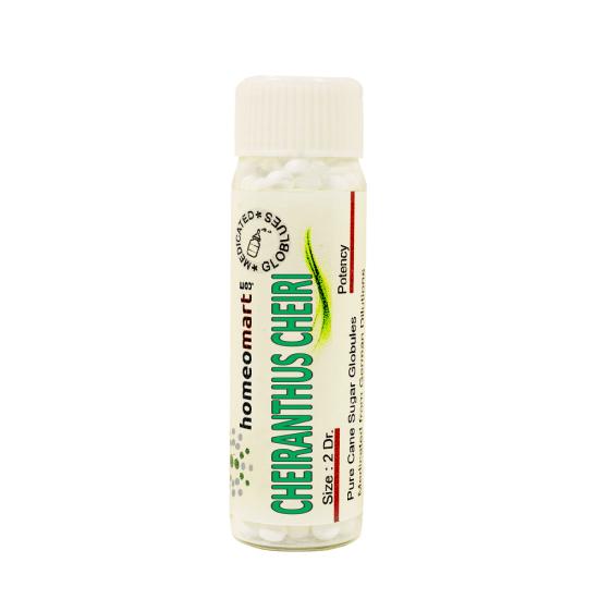Cheiranthus Cheiri Homeopathy 2 Dram Pellets 6C, 30C, 200C, 1M, 10M